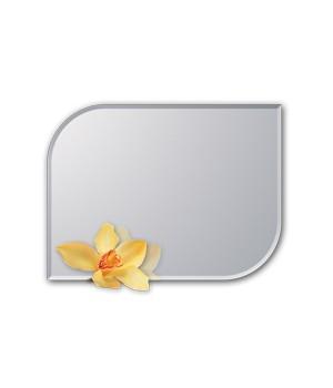mirror_12